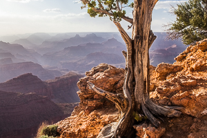 Paysage Etats Unis Grand Canyon